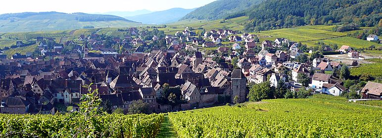 Riquewihr (France), maybe the most romantic medieval city in Alsace, is hidden among vineyards and Vosges mountains